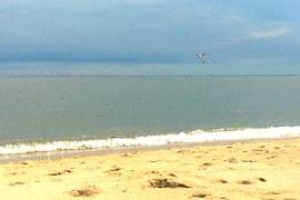 Delaware Bay