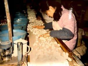 Silk Worm Factory, Beijing China