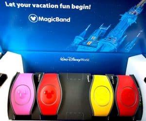 Magic Bands, Disney VIP