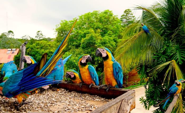 Pearl Islands, Panama