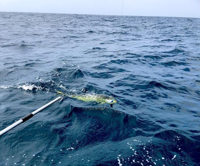 Pearl Islands fishing, Panama