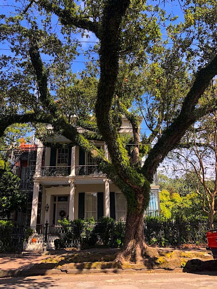 New Orleans, Garden District