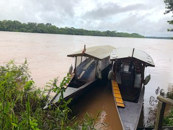Rio Dios de la Madre, Peru