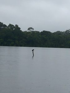 Lake Sandovil, Peru