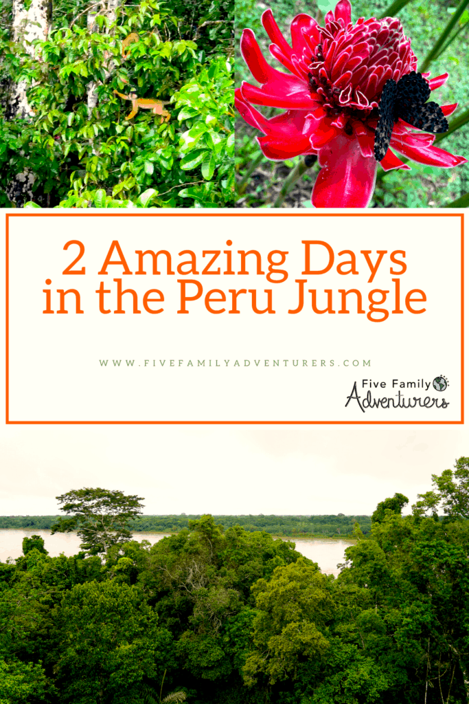 Peru Jungle, 2 days
