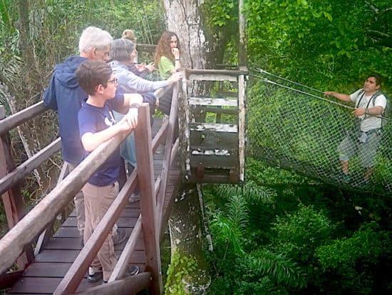 Canopy walk, Peru Jungle