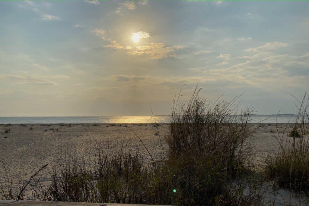 Edisto beach at sunset with tall grass